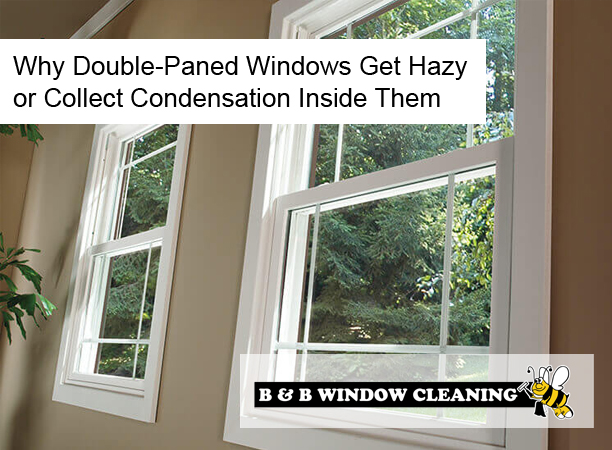 Why Double-Paned Windows Get Hazy or Collect Condensation Inside Them