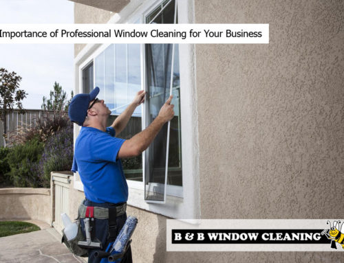 The Importance of Professional Window Cleaning for Your Business